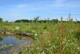Rijswijk fruitproeverij natuur biologisch meerwaarde