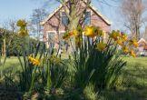 Maassluis de polderij duurzame mvo locatie impact lente