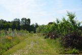 Rijswijk fruitproeverij natuur biologisch kwekerij