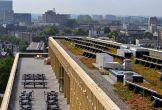 Rozet arnhem duurzaam mvo groen cultuur locaties met meerwaarde groen dak zonnepanelen