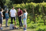 Nederlands wijnbouwcentrum groesbeek mvo mensen afstand arbeidsmarkt uitleg door wijnboer