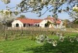 Nederlands wijnbouwcentrum groesbeek mvo mensen afstand arbeidsmarkt wijngaard