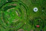 Malden kiemkracht duurzaam mvo natuur tuin natuur