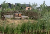 Rijswijk fruitproeverij natuur biologisch design bijen