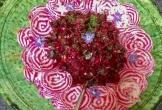 Dwingelderheem dwingelo natuur mvo oorsprong biologisch eten uit eigen tuin