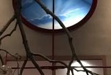 Loft in boxum locatie met meerwaarden voor cultuur in friesland_3 1