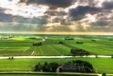 Gast op stal in wyns locatie met meerwaarde in friesland_5 1